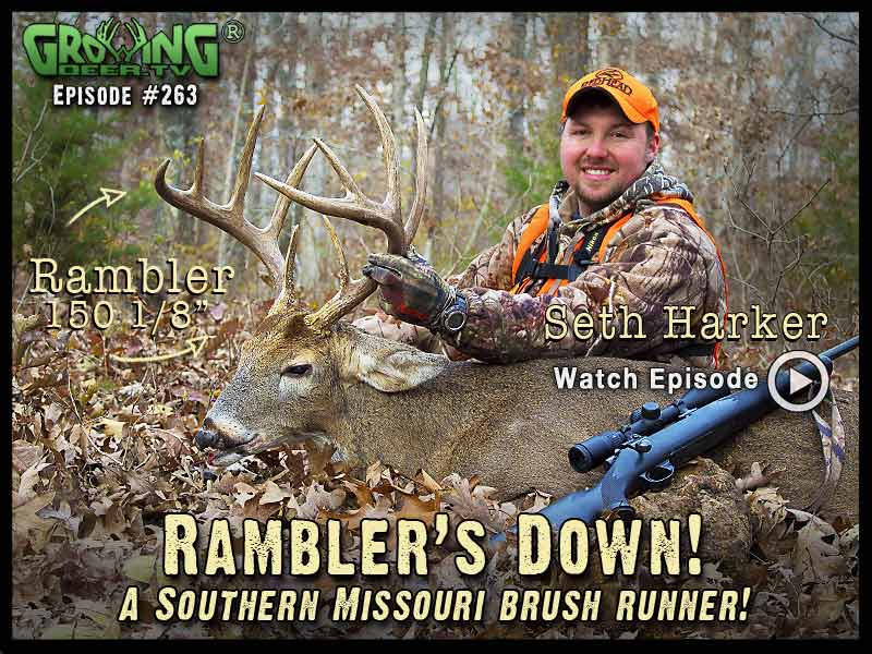 Seth Harker tags a hit list buck, Drifter, in GrowingDeer.tv episode #263.