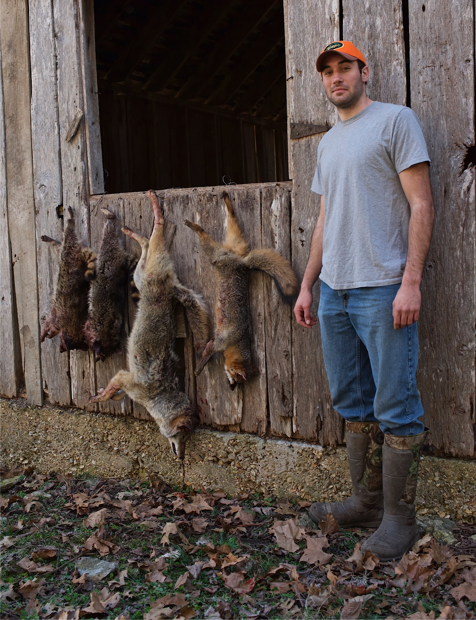 Daniel's trap line results were two raccoons, a coyote, and a fox.