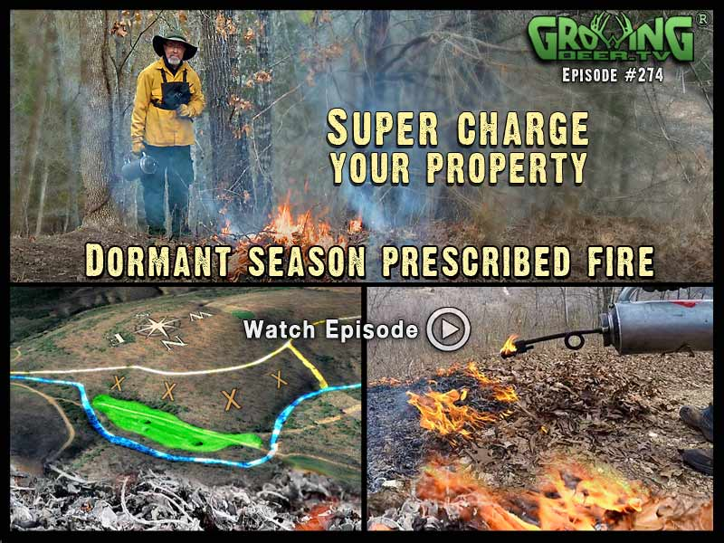 From start to finish on a dormant season prescribed fire in GrowingDeer.tv episode #274.