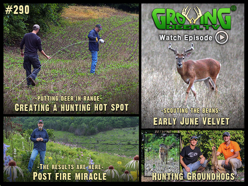 Watch GrowingDeer.tv episode #290 to see how we prepare for hunting season.
