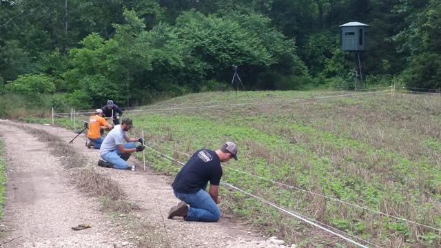 Installing an electric fence to protect a food plot