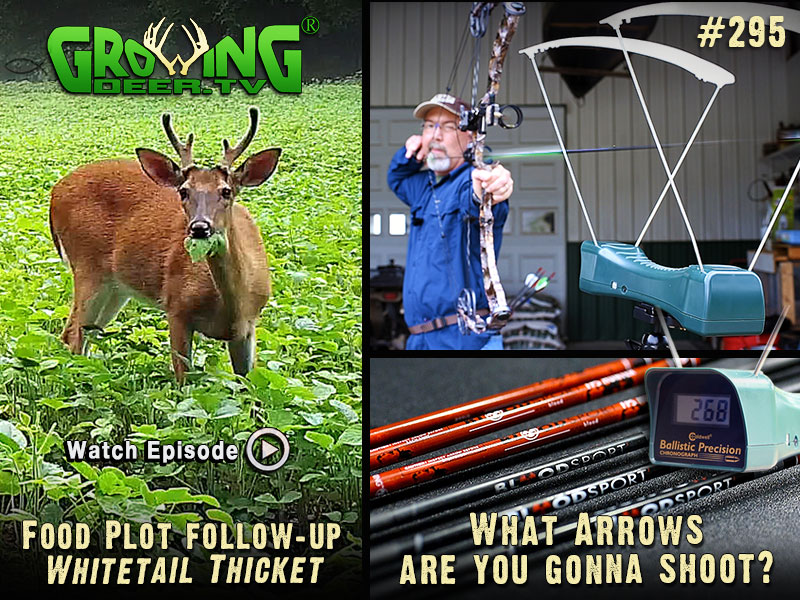 Grant tests arrow speed in GrowingDeer.tv episode #295.