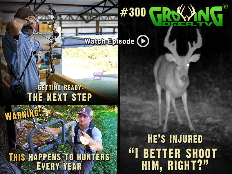Ever wonder if you should shoot injured bucks? Grant shares his thoughts in GrowingDeer.tv episode #300.
