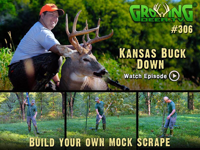Kansas Buck Down! Build your own mock scrape!