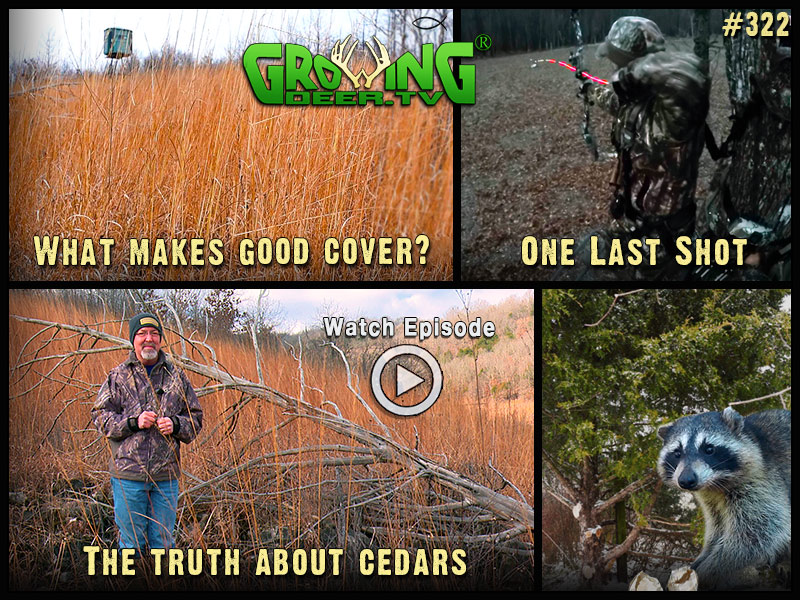 Watch the last bow hunt in GrowingDeer episode 322.