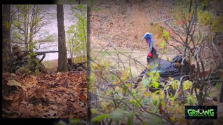 Kentucky Turkey Hunt: Turkey Down!