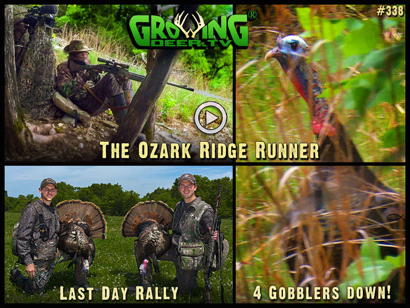 Watch late season gobbler action in GrowingDeer episode #338.