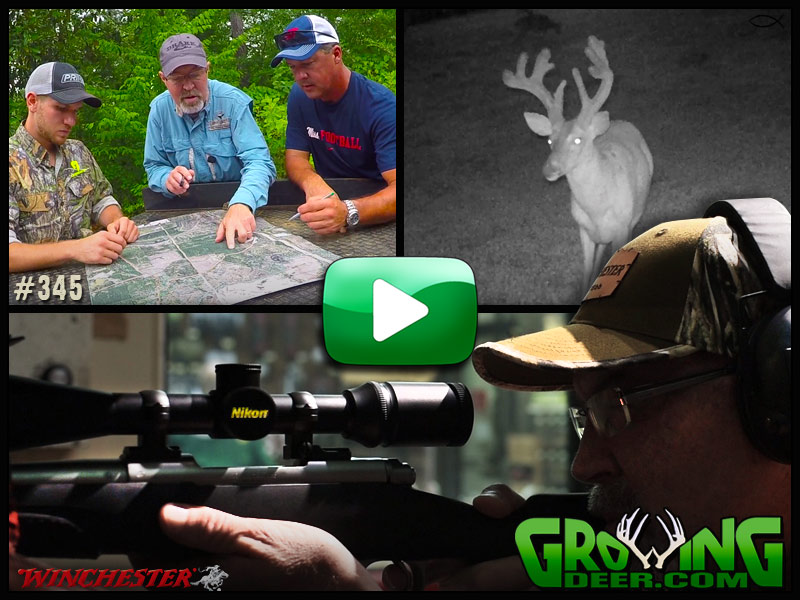 Grant and Matt consult in timber country in GrowingDeer episode 345.