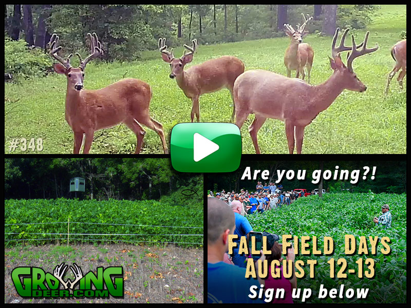 Learn how to build a hit list in GrowingDeer episode #348.