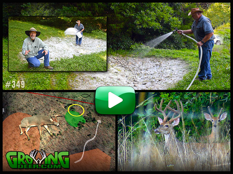 Learn hunting strategies for ponds and pasture land in GrowingDeer episode 349.