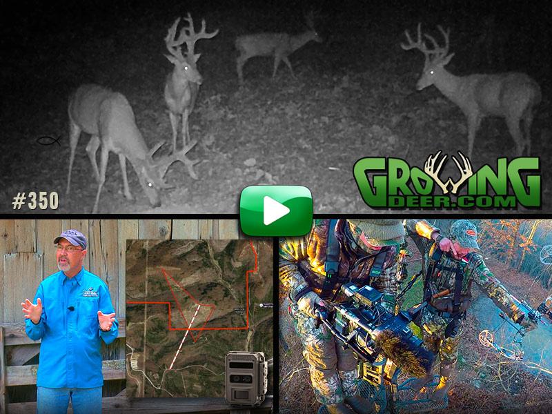 Learn strategies for hunting mature bucks in GrowingDeer episode 350.