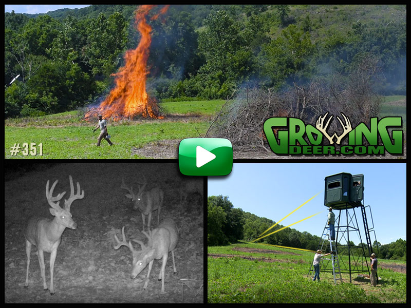 Watch a food plot renovation and archery practice in GrowingDeer episode #351.