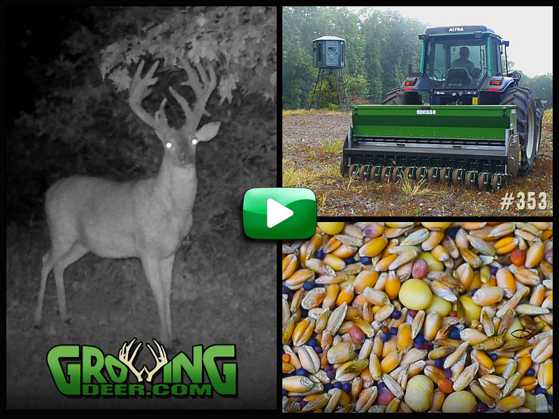 Learn about fall food plot techniques in GrowingDeer episode 353.