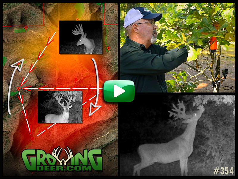 Learn how to pattern a mature buck in GrowingDeer episode 354.