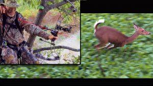 Grant takes a shot at a doe