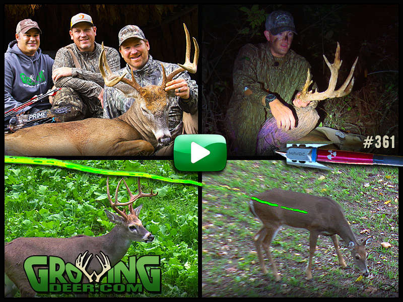 Watch intense deer hunting action in GrowingDeer episode #361.