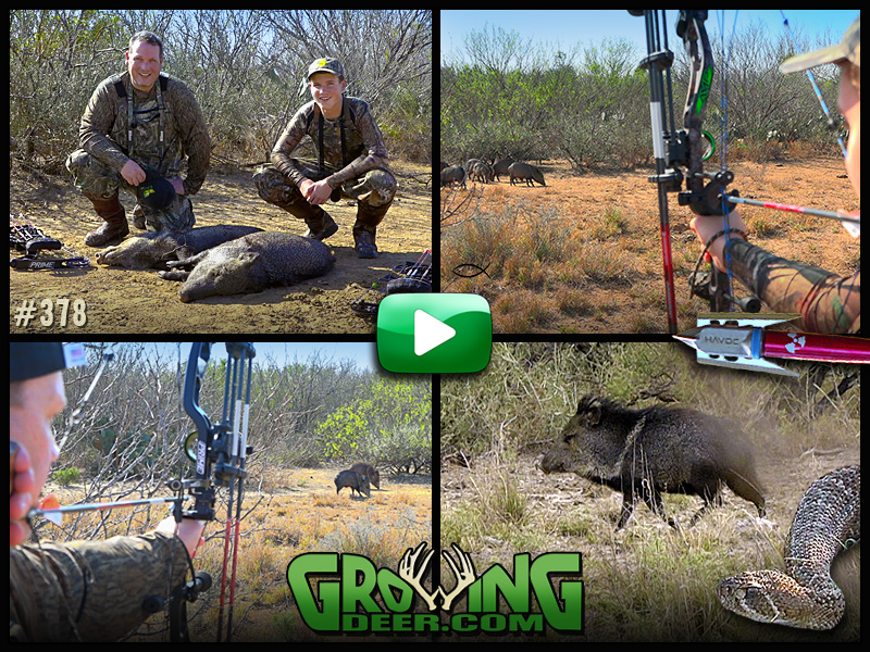 Watch the GrowingDeer Team go to south Texas in episode #378.
