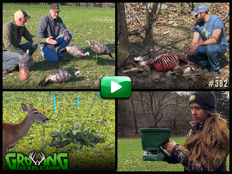 Watch GrowingDeer episode 382 to learn how we prepare food sources for deer and turkey hunting.