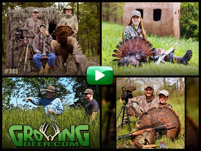 Watch three turkey hunts in GrowingDeer episode #388.