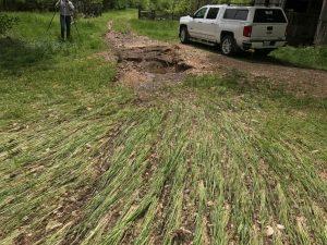 Cover crop versus erosion