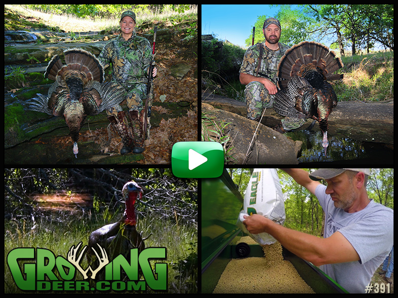 Watch a Kansas turkey hunt in GrowingDeer episode 391.