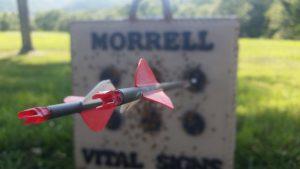 An arrow sticking out of a Morrell Target