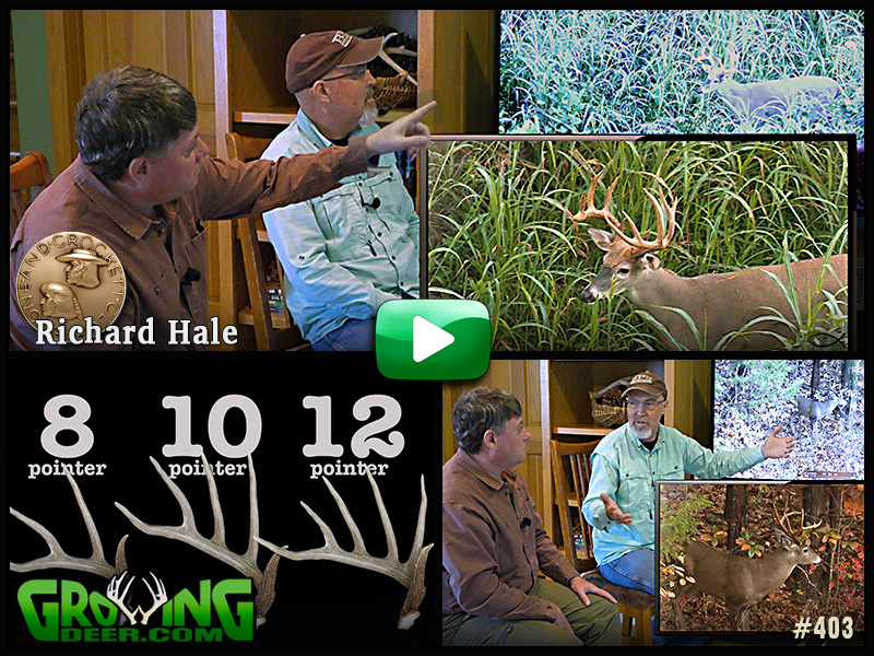 Learn how to estimate a buck's score from a guest Boone & Crockett expert