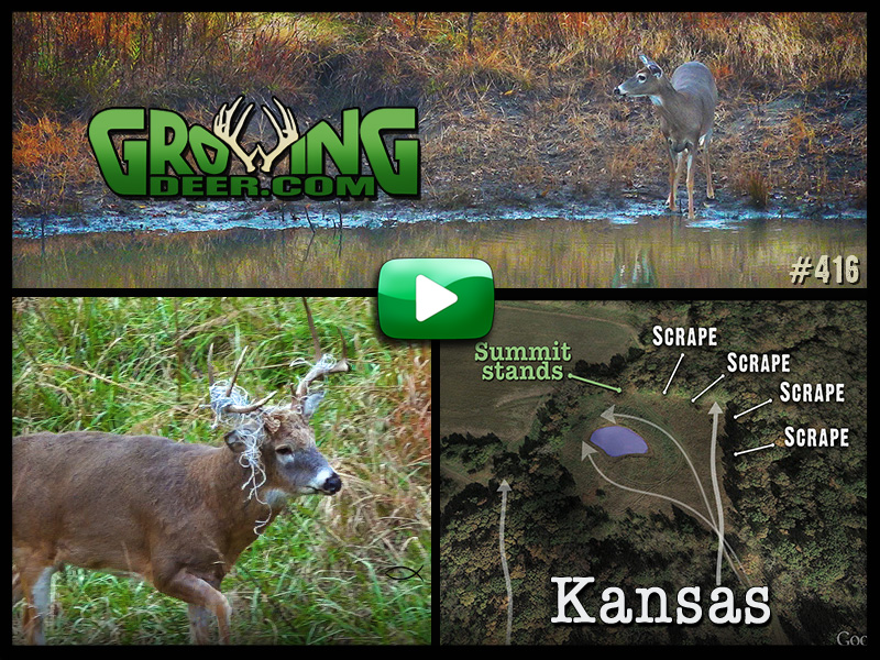 Watch episode 416 on GrowingDeer.com.