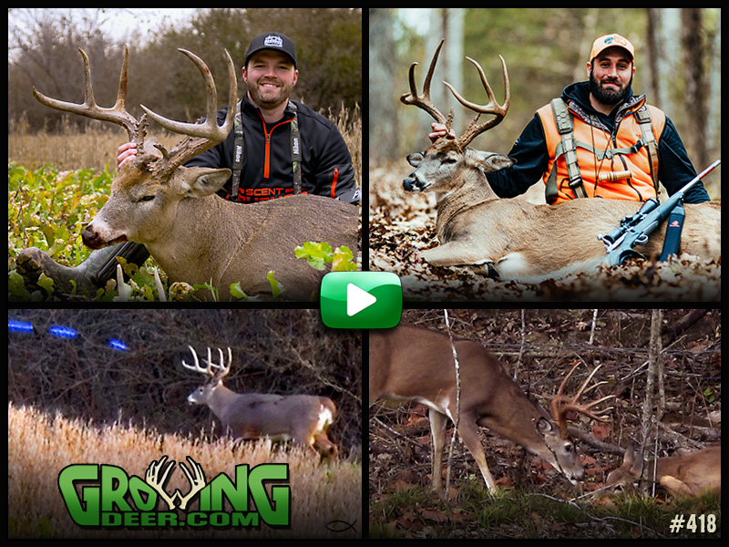 Watch episode 418 on GrowingDeer.com.