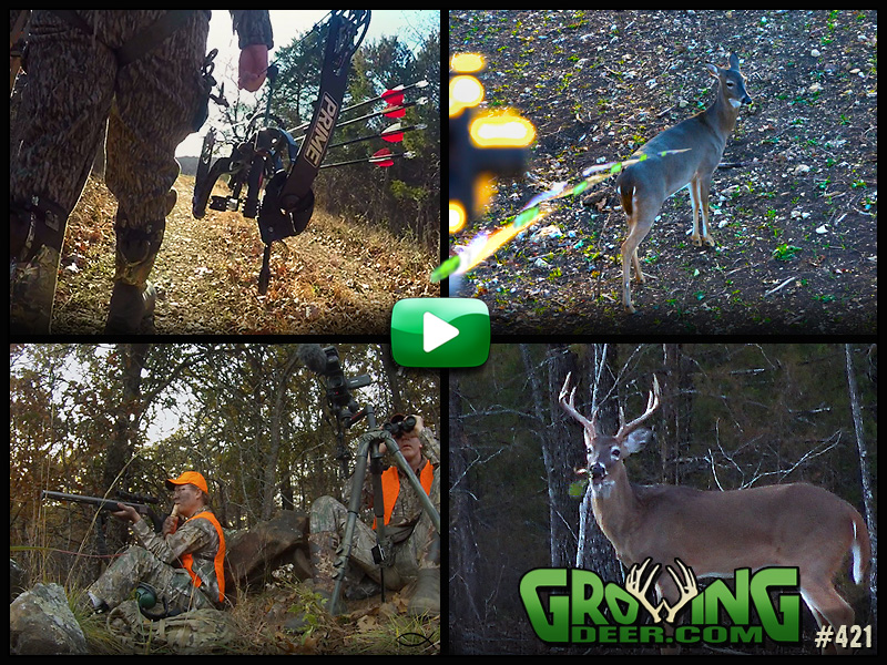 Watch GrowingDeer episode #421 now!