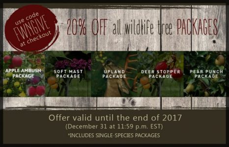 Flatwood Natives December 2017 promo code