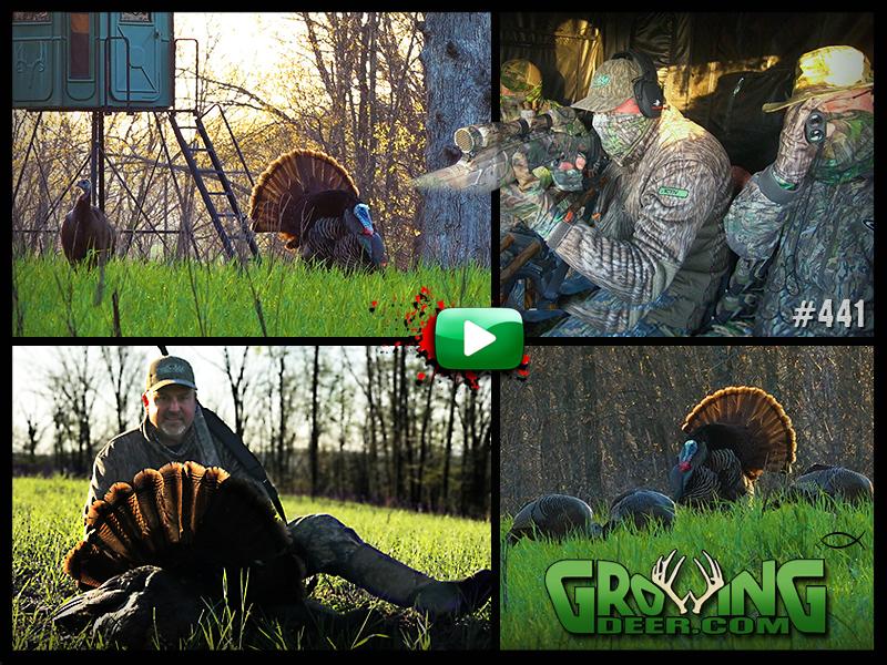 Watch a Ozark Mountain turkey hunt in GrowingDeer episode 441.