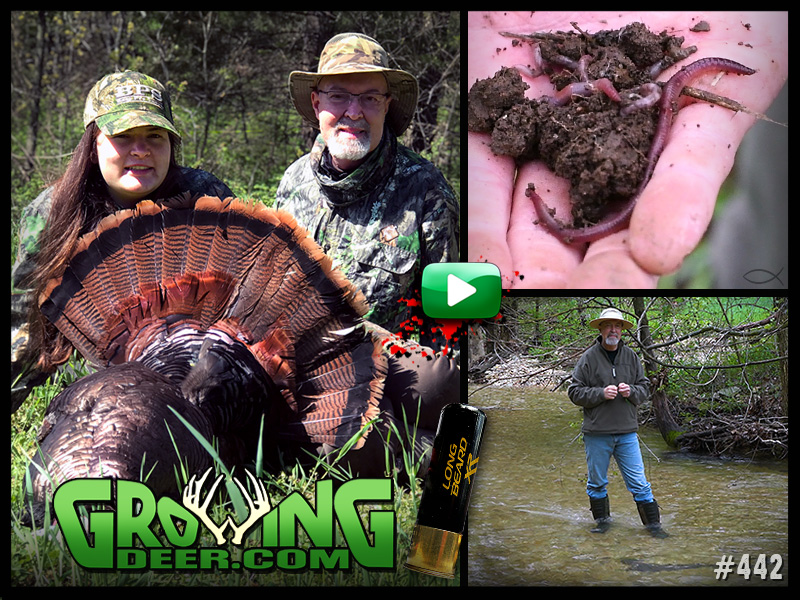 Watch Rae's turkey hunt in GrowingDeer episode 442.