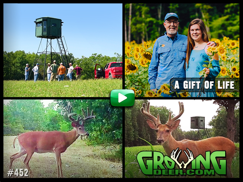 Improving habitat and hunting opportunities in GrowingDeer episode 452