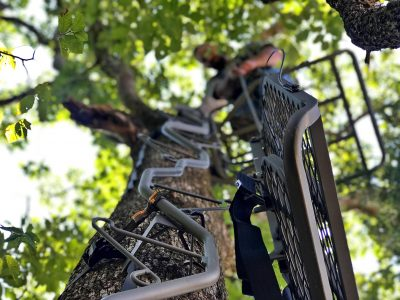 Pulling up a Summit treestand