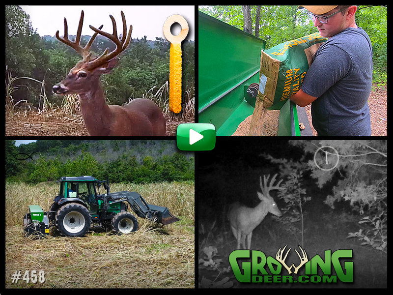 Planting food plots in GrowingDeer episode 458