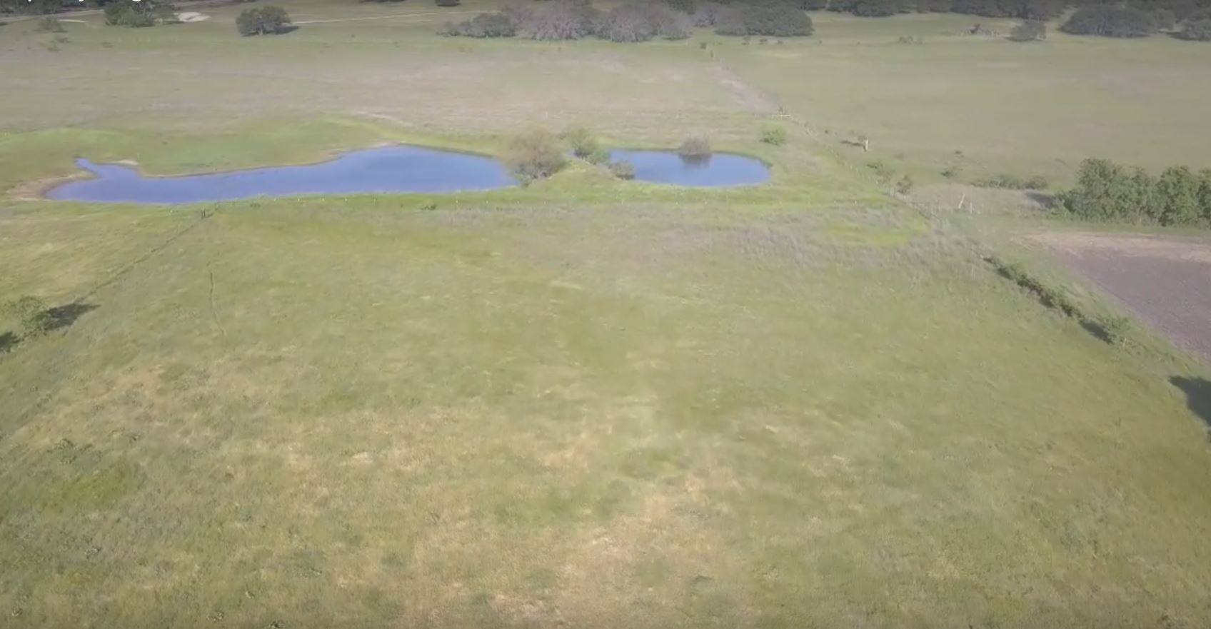 texas pasture with pond
